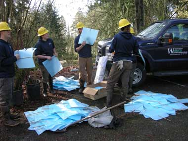 Here four members of the crew prepare some of the many blue tubes that protect the fledgling plantings.