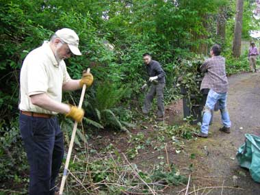 Work continued at the monthly work parties. In May, the Talapus Tillicum Chapter of the BSA Order of the Arrow joined us. One job was removing a small-ish area of English ivy along the back driveway.